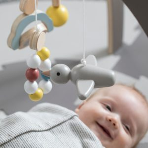 Sebra Spielbogen, Babygymnastikcenter, Baby gym, warmes grau 3005306 - 02