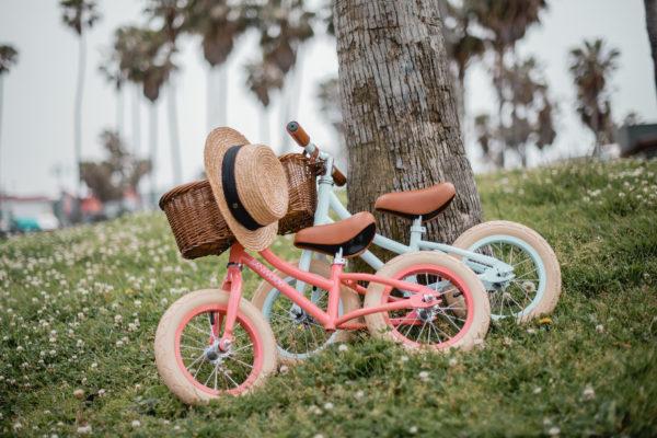 Banwood Laufrad Coral & Sky 2019 - 09